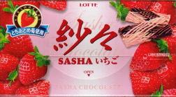 Sasha_ichigo